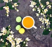 茶杯用绿茶和茉莉花在石背景开花 顶视图,平的位置 免版税图库摄影