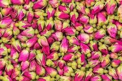 茶玫瑰色花背景 免版税库存图片