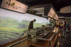 茶生产技术陈列 图库摄影