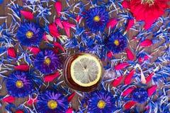 茶用与蓝色花的柠檬 图库摄影