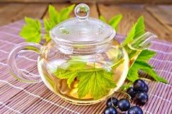 茶用在玻璃茶壶的黑醋栗在船上 图库摄影
