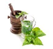 茶用新鲜的荨麻 免版税库存图片