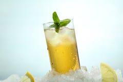 茶用柠檬和冰在玻璃 免版税库存照片