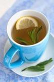 绿茶用柠檬和薄菏 图库摄影