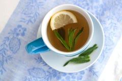 绿茶用柠檬和薄菏 免版税库存照片