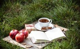 茶用桂香、苹果和一本开放书在草 秋天礼品 免版税库存图片