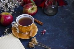 茶用红色苹果 库存图片