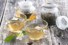 绿茶用茉莉属 免版税库存图片
