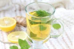 茶用薄菏和柠檬和姜 免版税库存图片