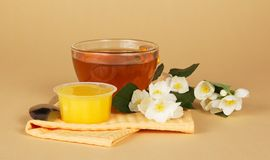 茶用蜂蜜和茉莉花 库存图片