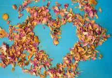 茶的干瓣的心脏在蓝色背景上升了 免版税库存图片