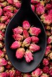 茶的玫瑰 免版税库存照片