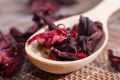 茶的瓣在一个木匙子特写镜头的 红色宠物宏观照片  图库摄影