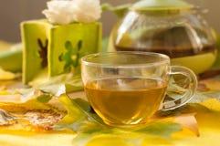 茶罐、一个杯子新鲜的茶,秋叶和花 库存图片
