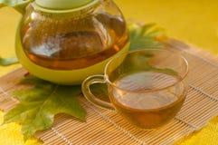 茶罐、一个杯子清凉茶和秋叶 免版税库存图片