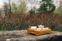 茶道的中国或日本白色茶具在绿色庭院里 免版税库存图片