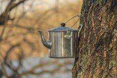 茶野营的水壶 库存照片