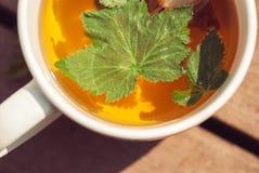 茶顶视图与无核小葡萄干叶子的在白色杯子 免版税库存照片