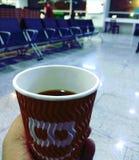 茶魔术-茉莉花茶 免版税库存照片
