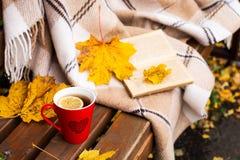茶,格子花呢披肩,柠檬,被染黄的叶子 免版税图库摄影