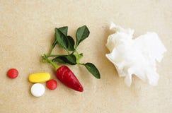 茶,胡椒,柠檬自然补救对药片 免版税库存照片