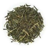 绿茶Sencha日本 免版税库存照片