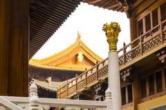 荆山在专栏的寺庙金黄狮子 库存照片