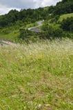 草、屋顶房子和弯曲道路 免版税库存图片