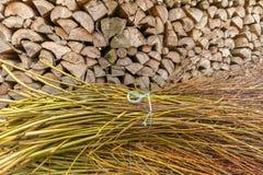 草丛和木柴 图库摄影