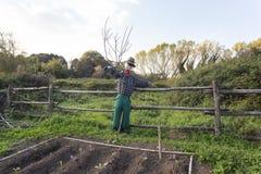 稻草人在一个菜园里在乡下 免版税库存图片