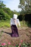 稻草人在庭院里 库存照片