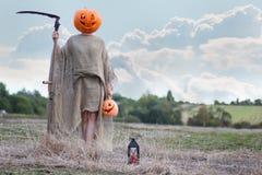 稻草人在领域的南瓜头 免版税库存图片
