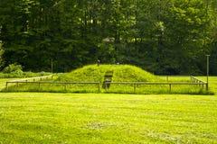 草从污水处理厂的小山通入 免版税图库摄影
