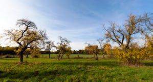 草原和牧场地 免版税库存图片