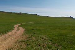 草原在美丽的蓝天下 免版税库存图片