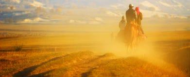 草原牛仔后面 库存图片