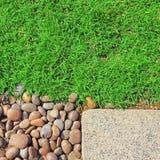 草向纹理扔石头 免版税库存照片