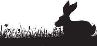 草和兔子剪影  免版税库存照片