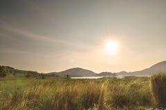 草和减速火箭日出的葡萄酒 库存图片