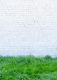 绿草和墙壁 库存照片
