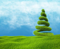 绿草和天空的领域与螺旋树 免版税库存照片