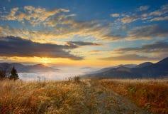 草和日出在喀尔巴汗 免版税库存照片