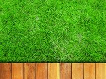 草和木头木板走道 免版税库存图片
