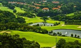 绿草和树在高尔夫球场 免版税库存照片