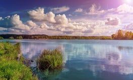 草和湖在日落期间 自然美好的横向 剧烈,美好的场面早晨 免版税库存照片