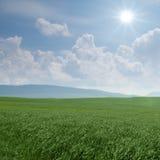 绿草和白色云彩背景 免版税库存图片