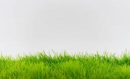 绿草和白色墙壁,抽象纹理背景 库存照片