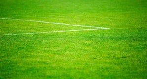 草和粉笔线在橄榄球球场特写镜头 免版税库存照片