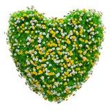 绿草和花的心脏 免版税库存照片