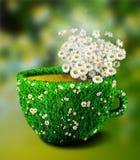 从草和花的药草浸剂杯子 免版税库存图片